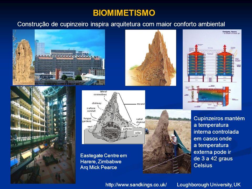 BIOMIMETISMO Construção de cupinzeiro inspira arquitetura com maior conforto ambiental.