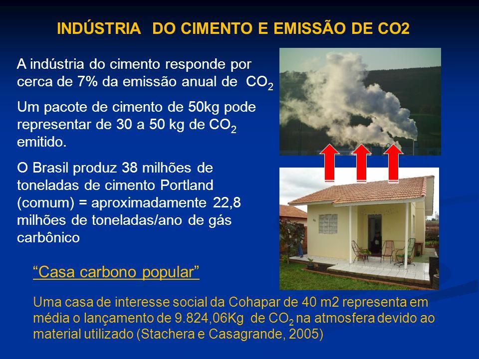 INDÚSTRIA DO CIMENTO E EMISSÃO DE CO2