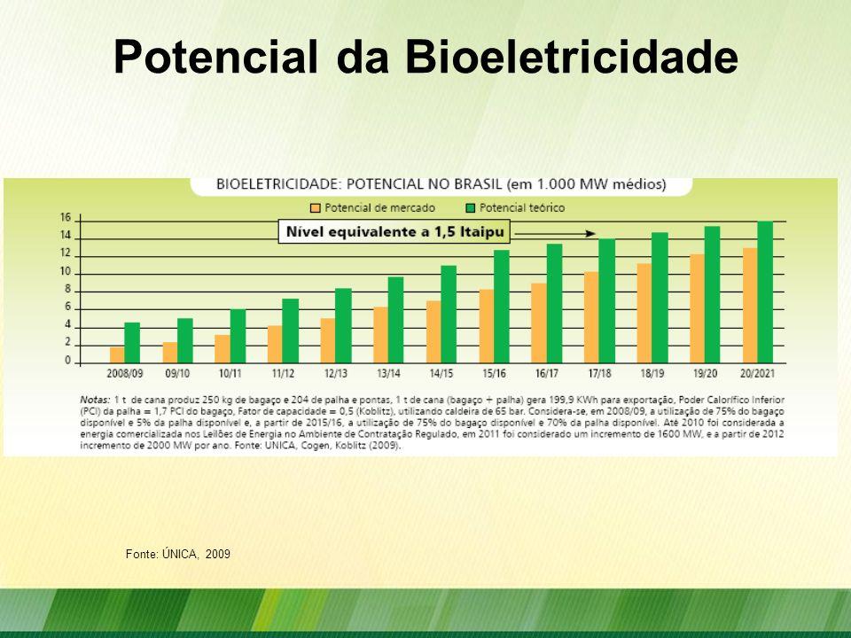 Potencial da Bioeletricidade