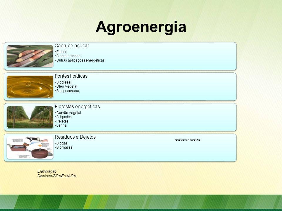 Agroenergia Elaboração: Denilson/SPAE/MAPA Fonte: BEN 2010/EPE/MME