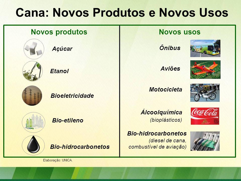 Cana: Novos Produtos e Novos Usos