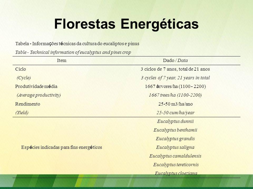 Florestas Energéticas