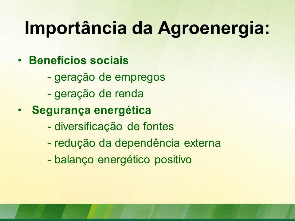 Importância da Agroenergia: