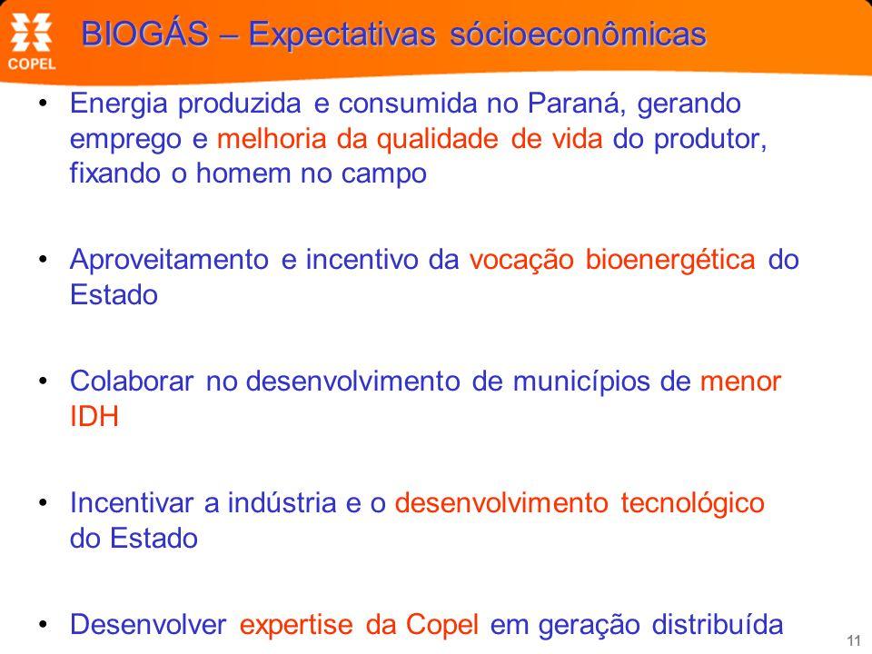 BIOGÁS – Expectativas sócioeconômicas