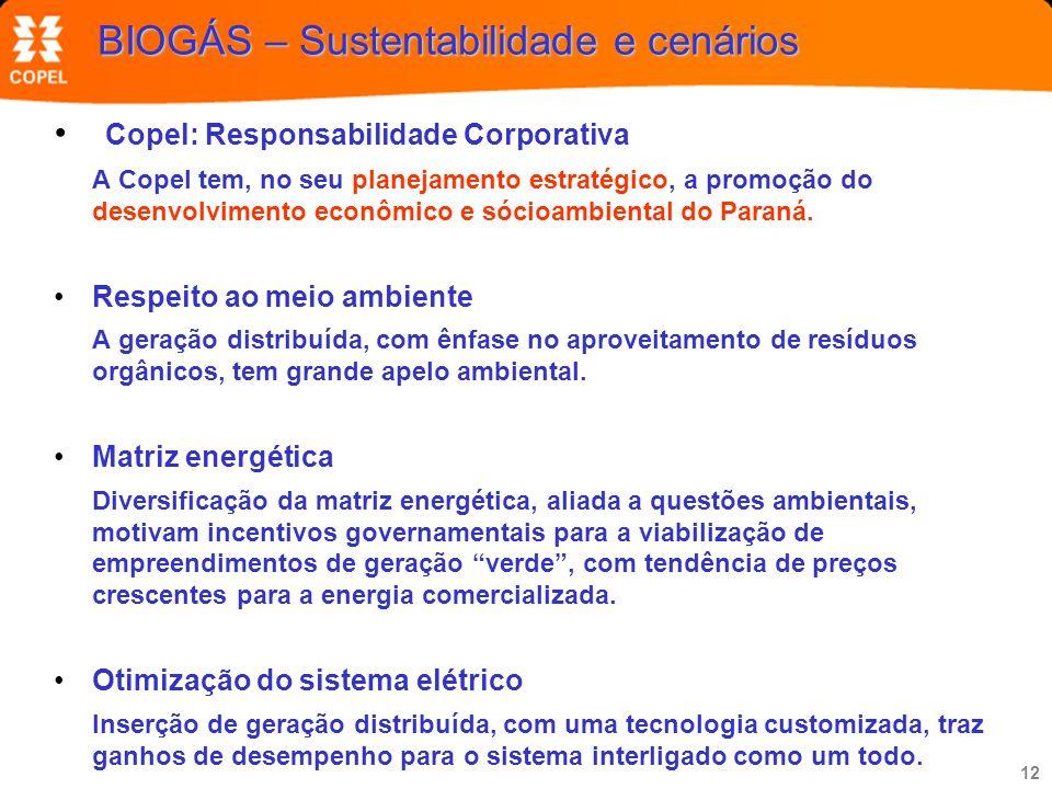 BIOGÁS – Sustentabilidade e cenários