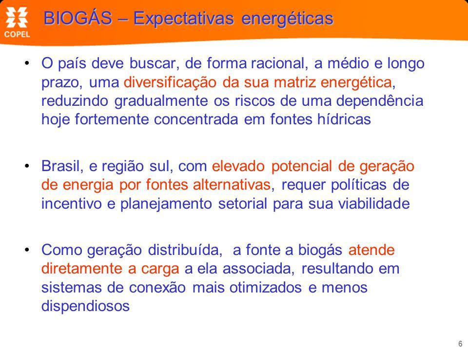 BIOGÁS – Expectativas energéticas