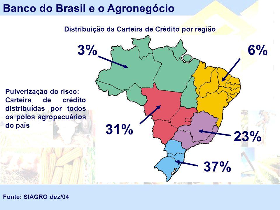 Distribuição da Carteira de Crédito por região