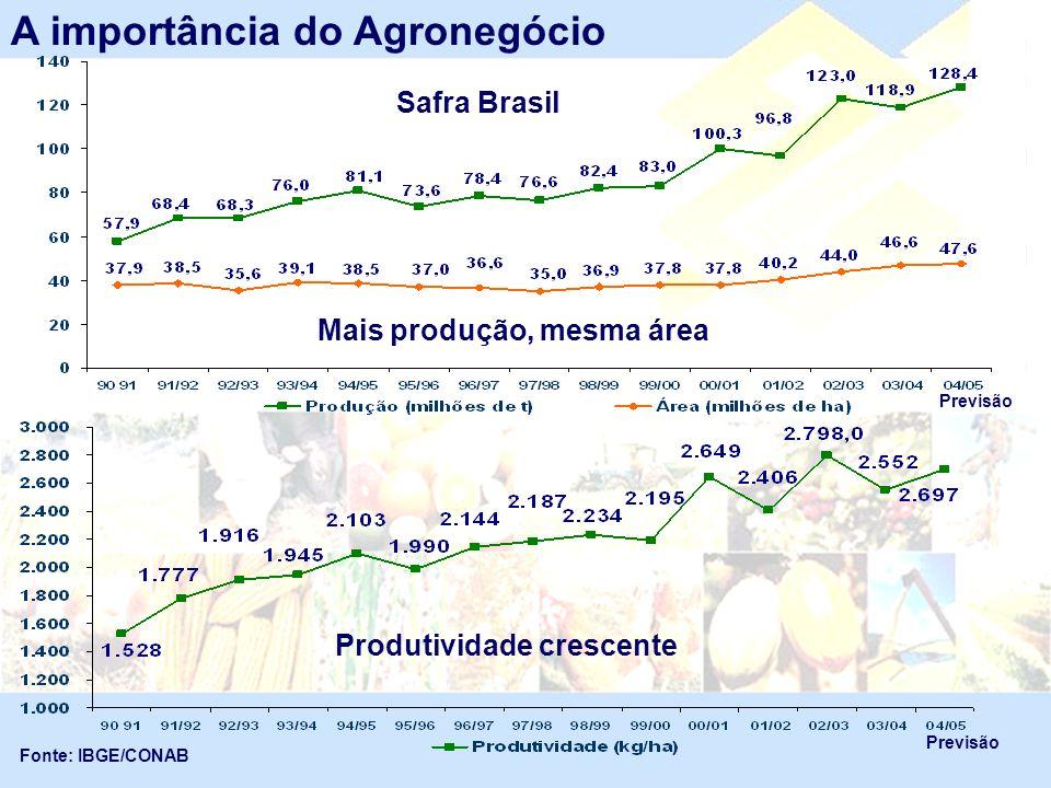 A importância do Agronegócio