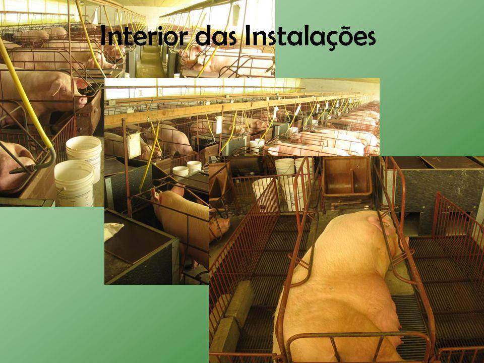 Interior das Instalações