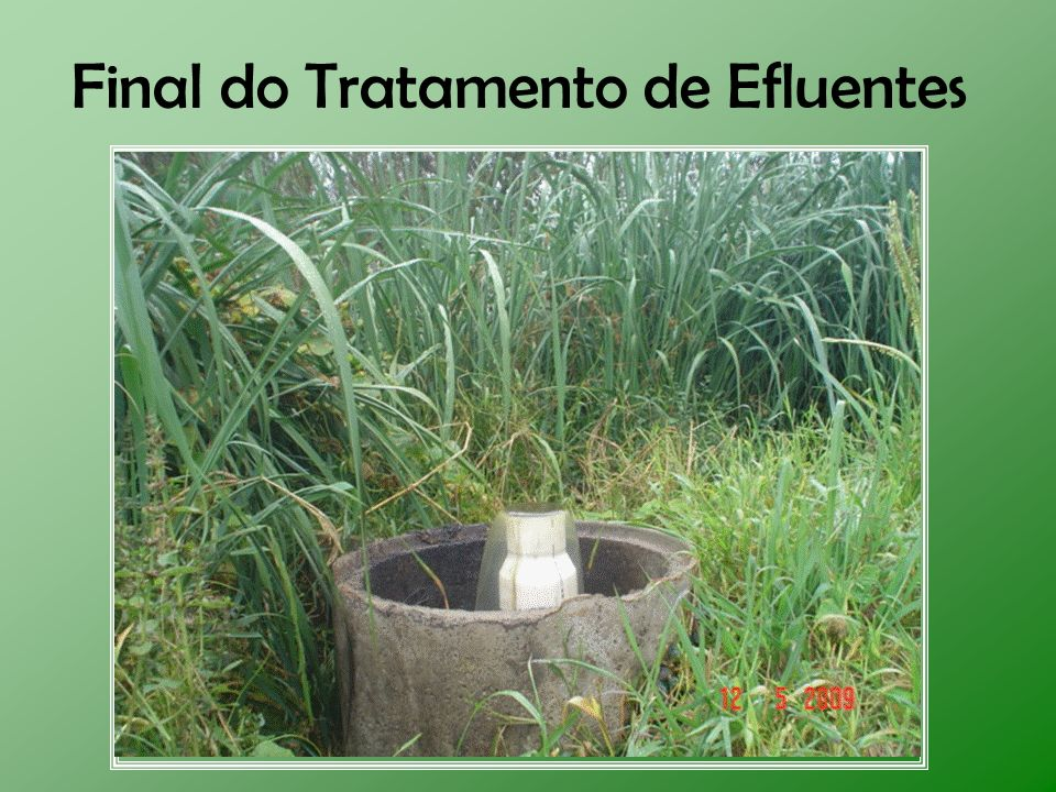 Final do Tratamento de Efluentes