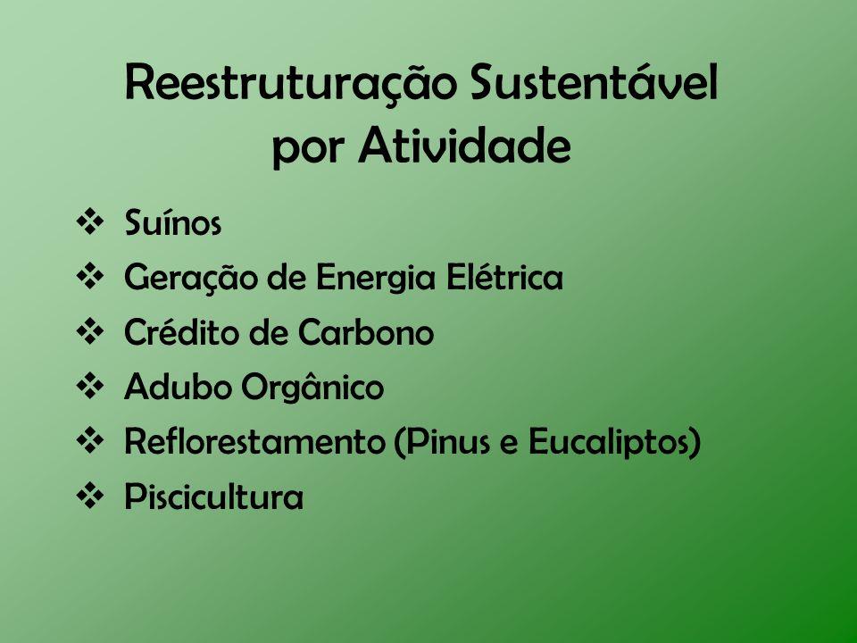 Reestruturação Sustentável por Atividade