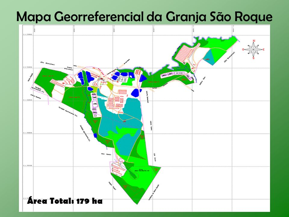 Mapa Georreferencial da Granja São Roque