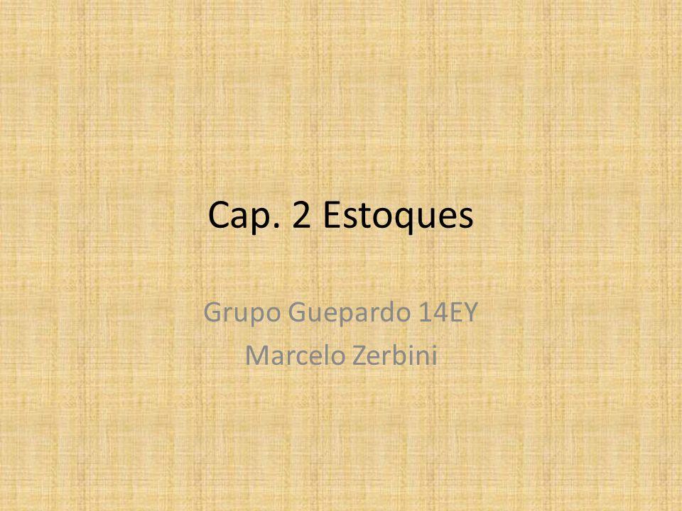 Grupo Guepardo 14EY Marcelo Zerbini