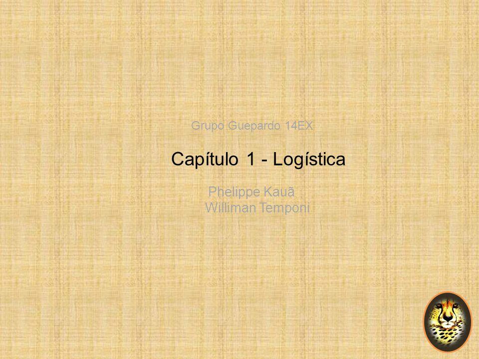 Williman Temponi Grupo Guepardo 14EX Capítulo 1 - Logística