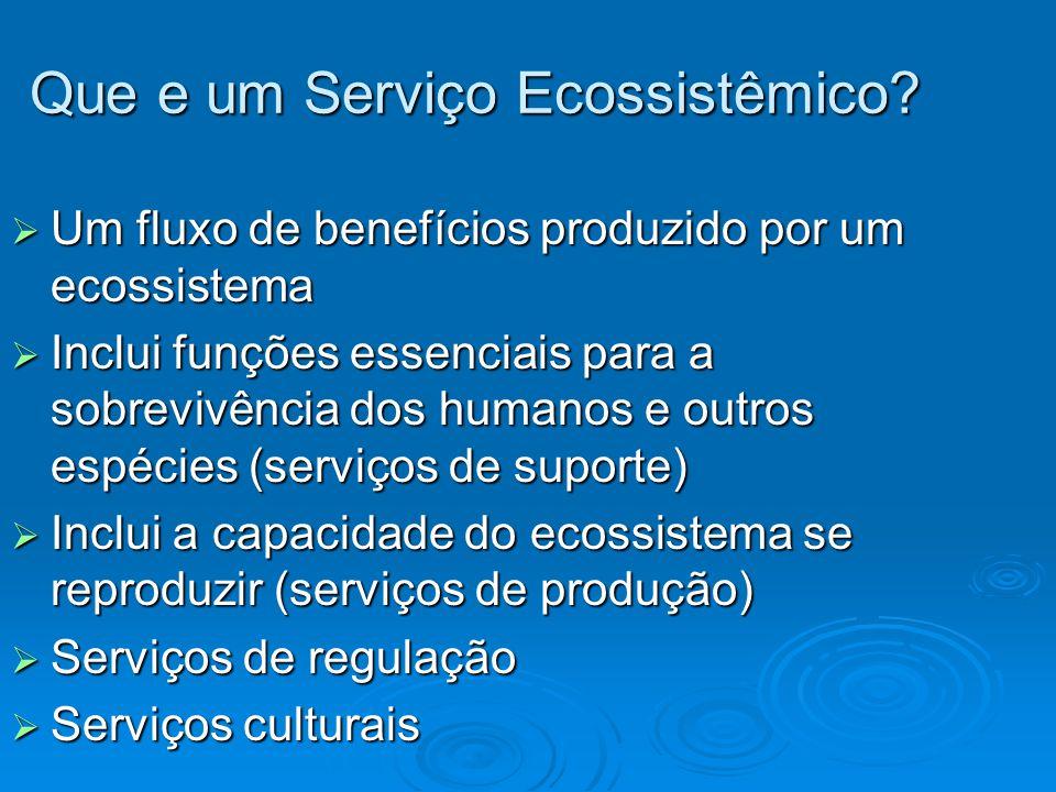 Que e um Serviço Ecossistêmico