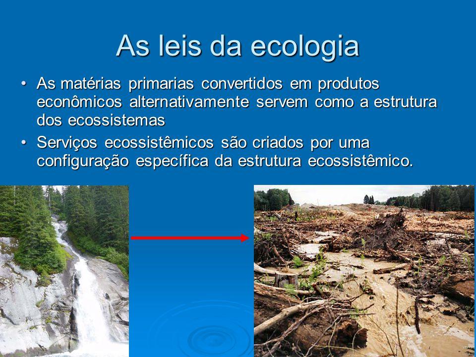As leis da ecologia As matérias primarias convertidos em produtos econômicos alternativamente servem como a estrutura dos ecossistemas.