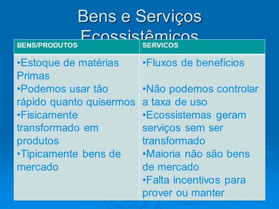 Bens e Serviços Ecossistêmicos