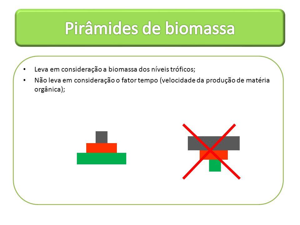 Pirâmides de biomassa Leva em consideração a biomassa dos níveis tróficos;