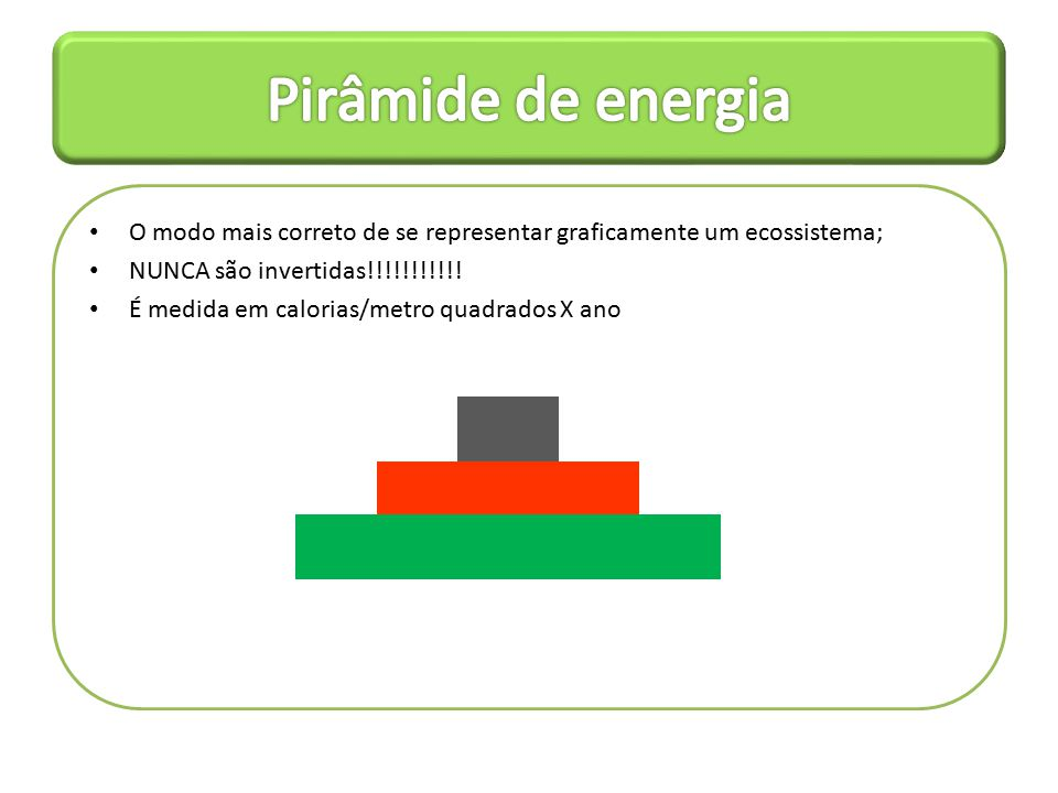 Pirâmide de energia O modo mais correto de se representar graficamente um ecossistema; NUNCA são invertidas!!!!!!!!!!!