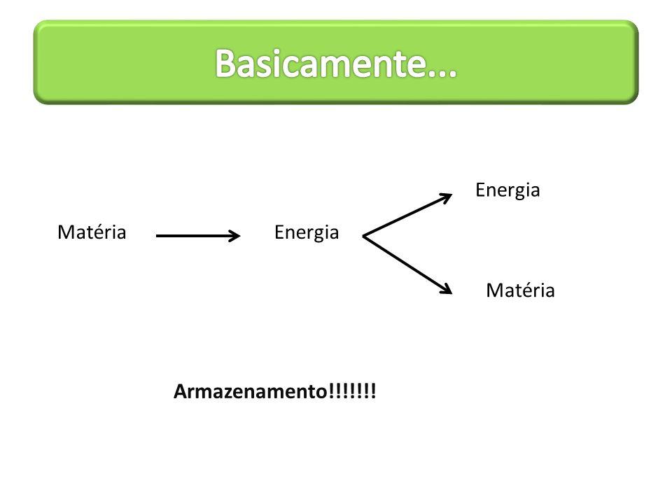 Basicamente... Matéria Energia Armazenamento!!!!!!!