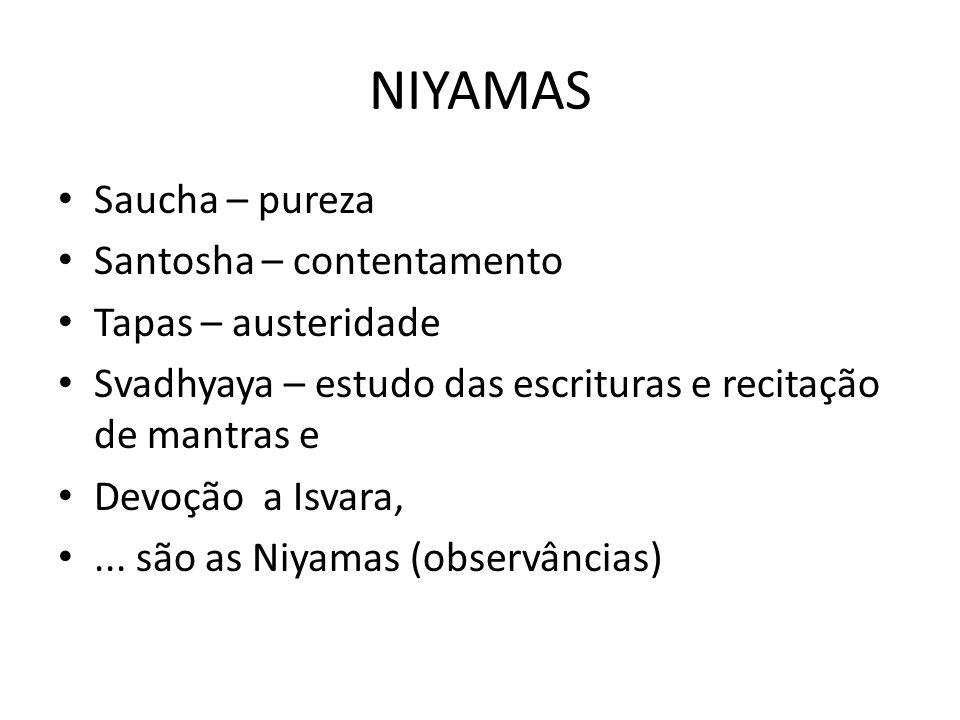 NIYAMAS Saucha – pureza Santosha – contentamento Tapas – austeridade