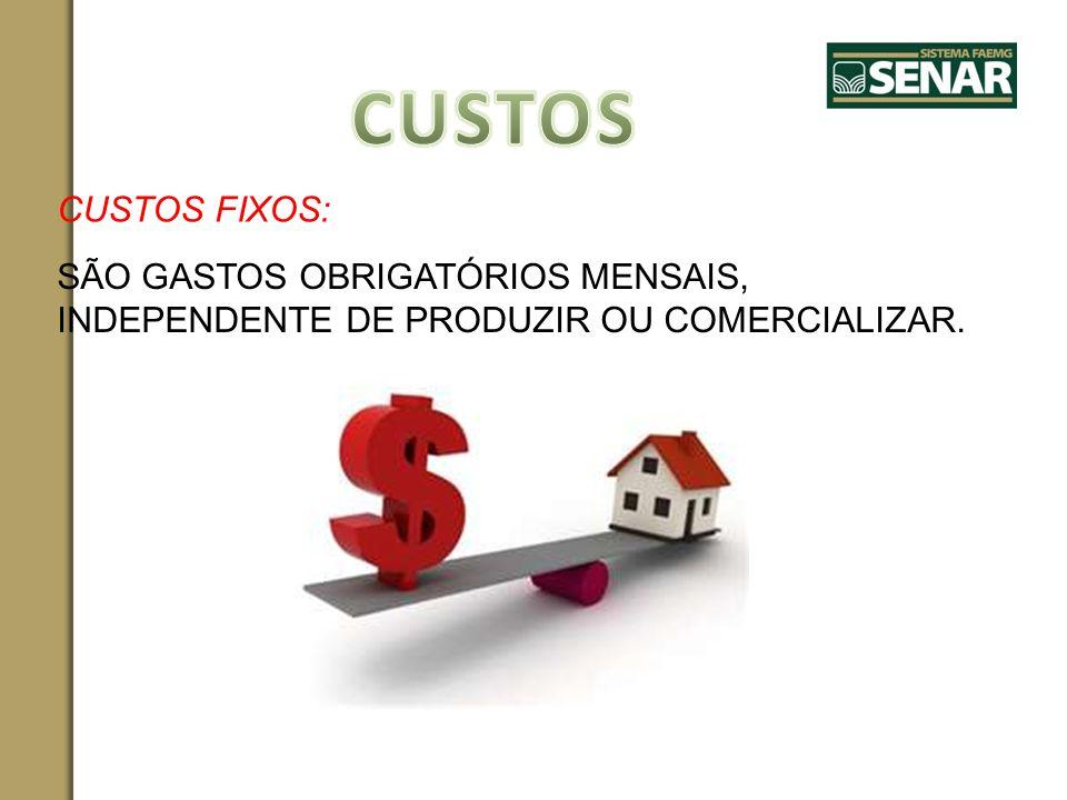 CUSTOS CUSTOS FIXOS: SÃO GASTOS OBRIGATÓRIOS MENSAIS, INDEPENDENTE DE PRODUZIR OU COMERCIALIZAR.