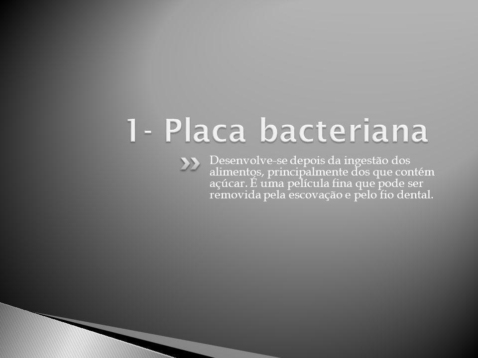 1- Placa bacteriana