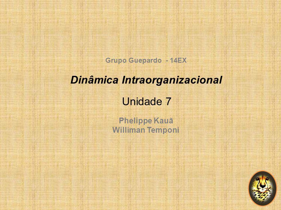 Dinâmica Intraorganizacional