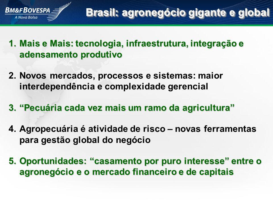 Brasil: agronegócio gigante e global