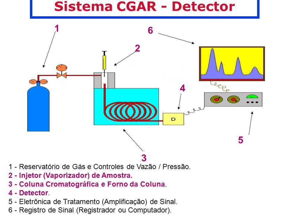 Sistema CGAR - Detector FABIO AUGUSTO / © 1995 - 2002 Chemkeys
