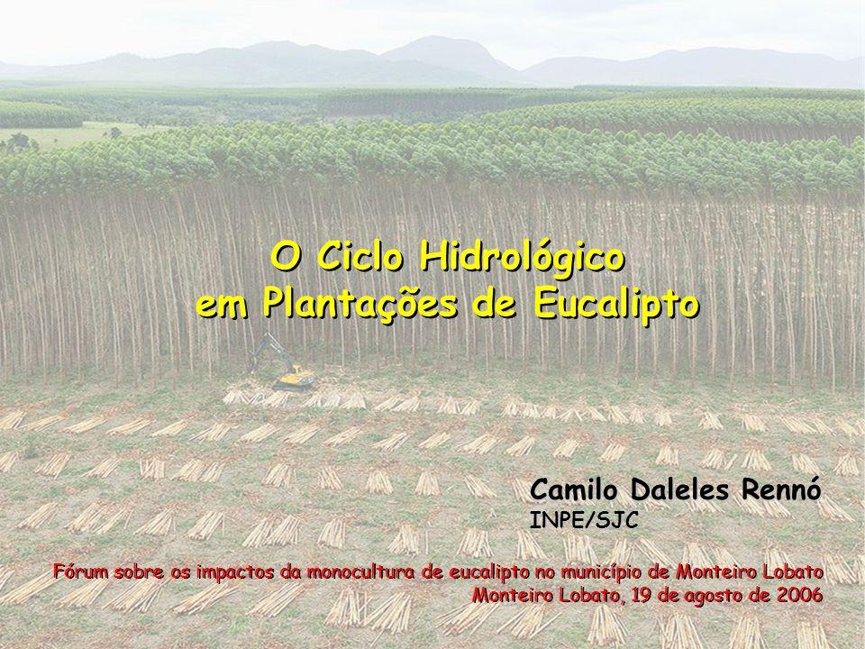 em Plantações de Eucalipto