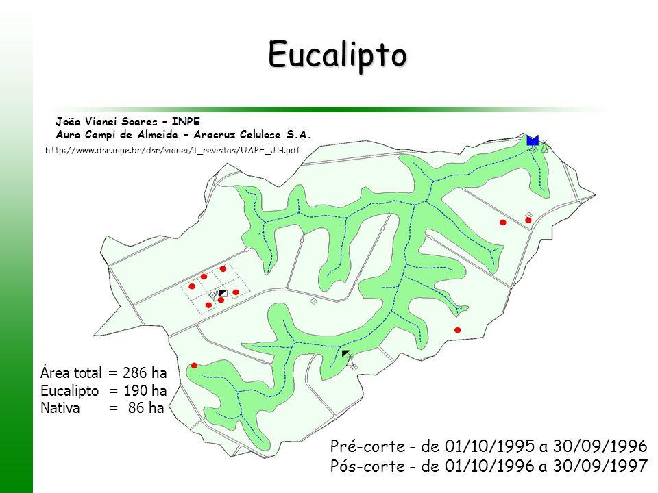 Eucalipto Pré-corte - de 01/10/1995 a 30/09/1996