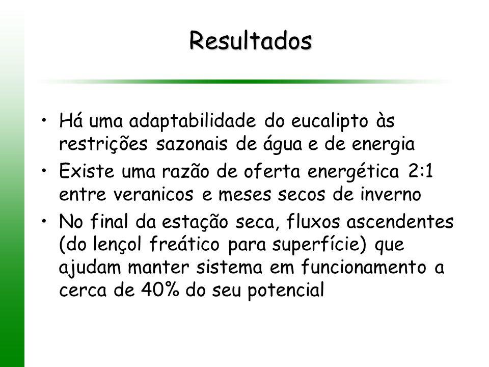 Resultados Há uma adaptabilidade do eucalipto às restrições sazonais de água e de energia.