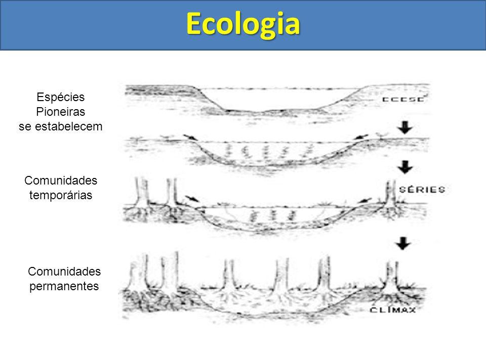 Ecologia Espécies Pioneiras se estabelecem Comunidades temporárias