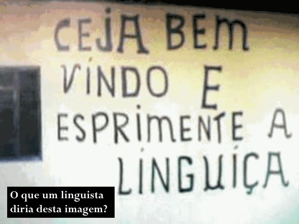 O que um linguista diria desta imagem