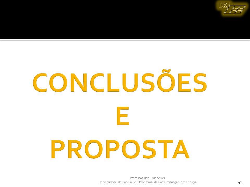 CONCLUSÕES E PROPOSTA 41 41 Professor Ildo Luís Sauer