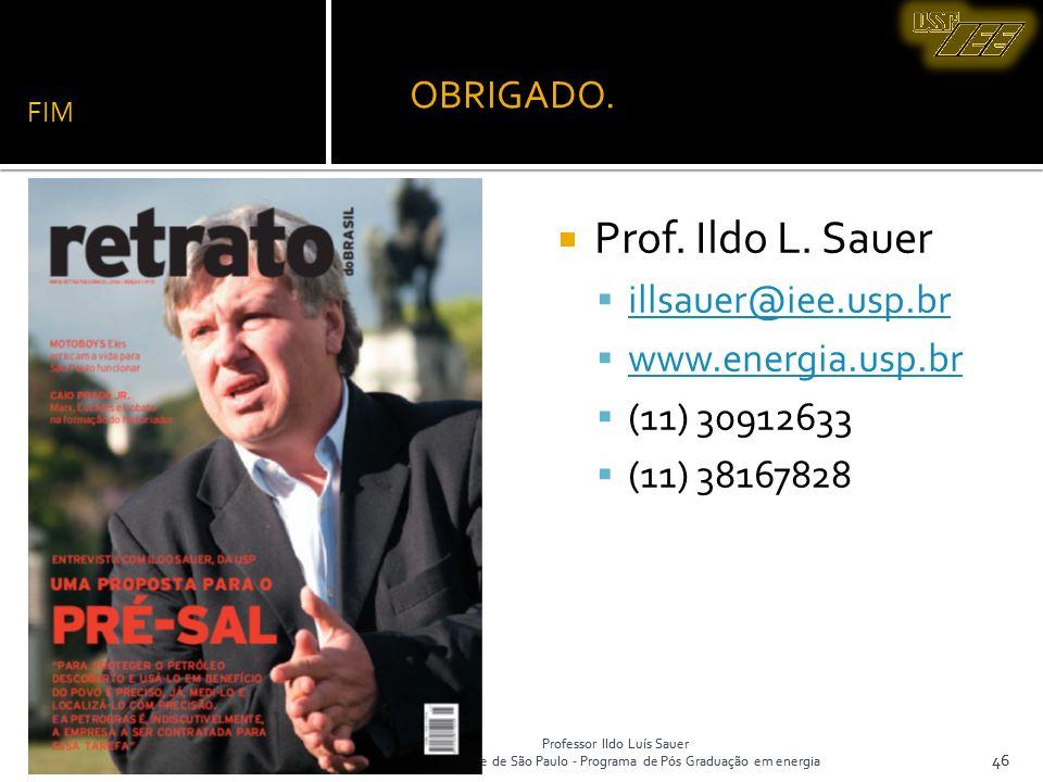 Prof. Ildo L. Sauer OBRIGADO. illsauer@iee.usp.br www.energia.usp.br