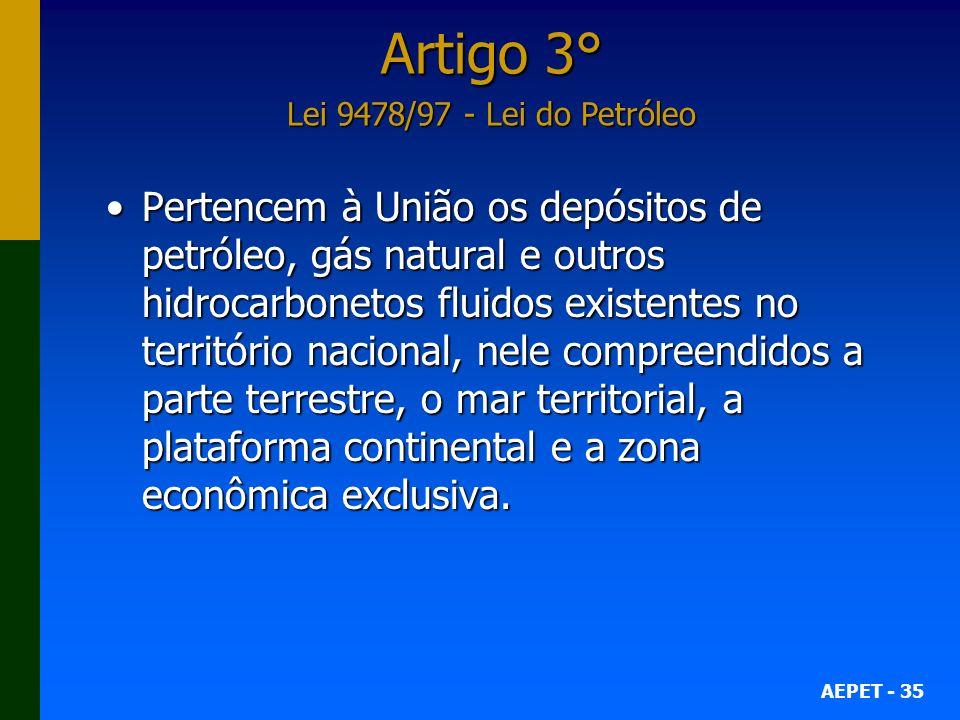 Artigo 3° Lei 9478/97 - Lei do Petróleo