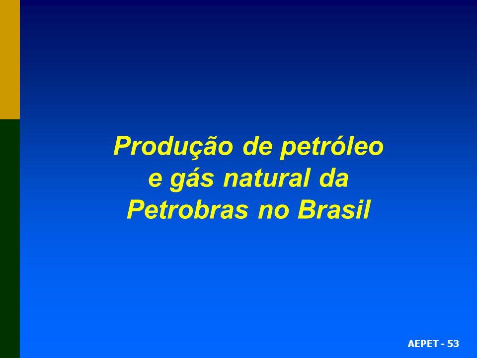 Produção de petróleo e gás natural da Petrobras no Brasil