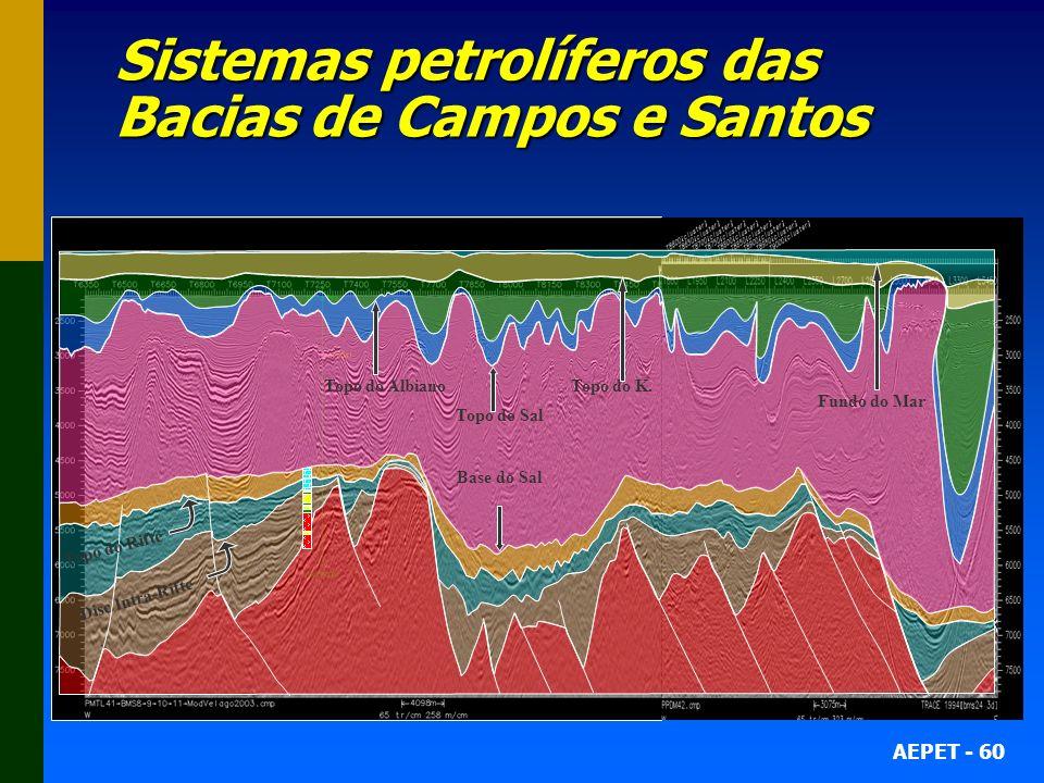 Sistemas petrolíferos das Bacias de Campos e Santos