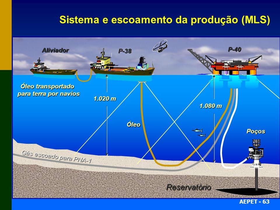 Sistema e escoamento da produção (MLS)