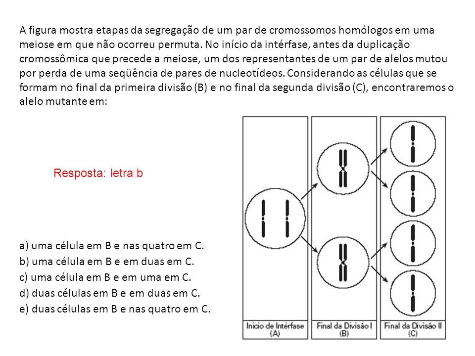 a) uma célula em B e nas quatro em C.