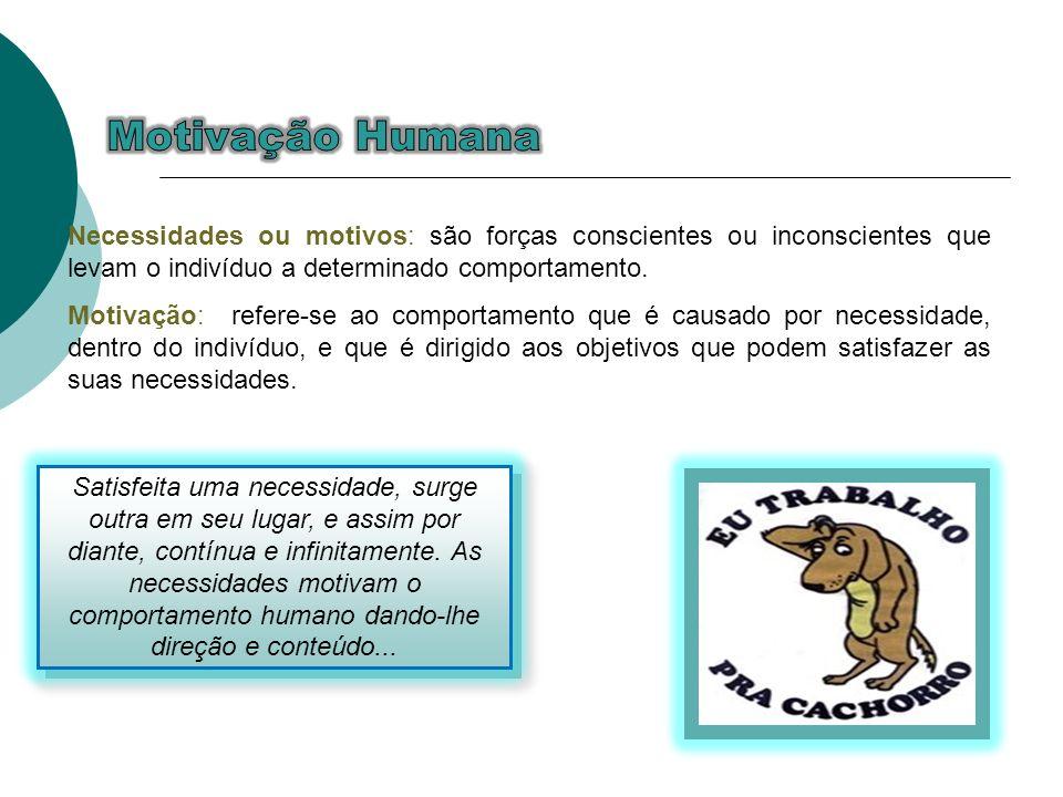 Motivação Humana Necessidades ou motivos: são forças conscientes ou inconscientes que levam o indivíduo a determinado comportamento.