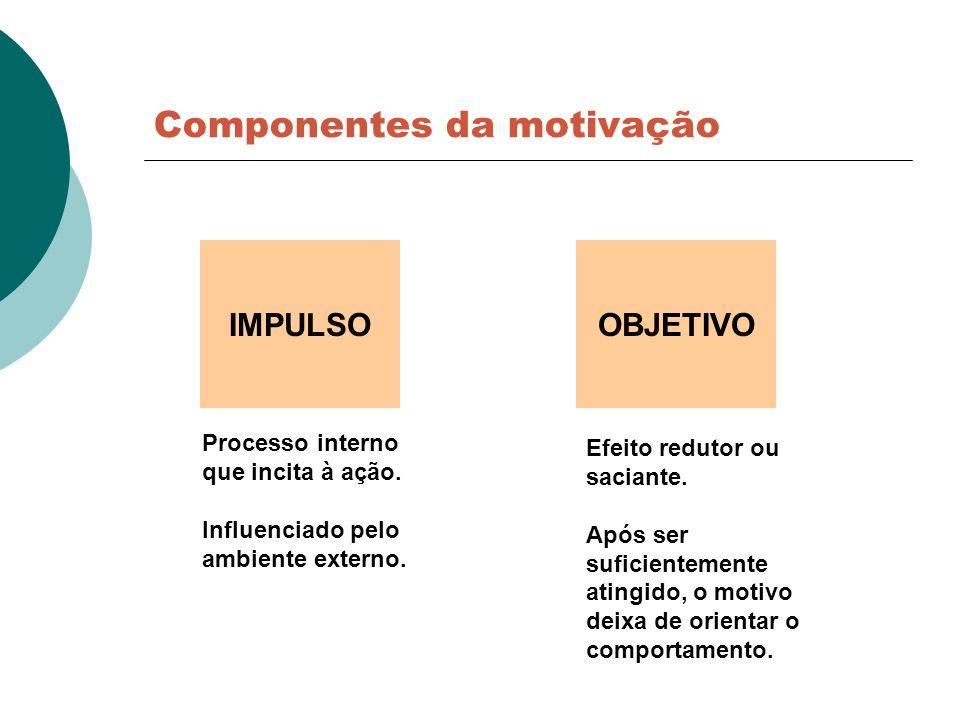 Componentes da motivação