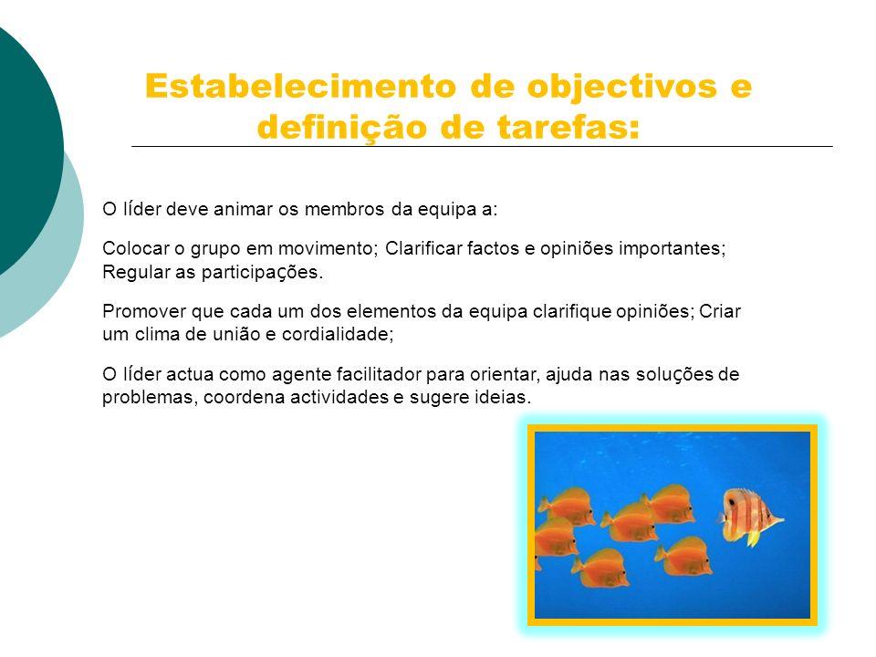 Estabelecimento de objectivos e definição de tarefas: