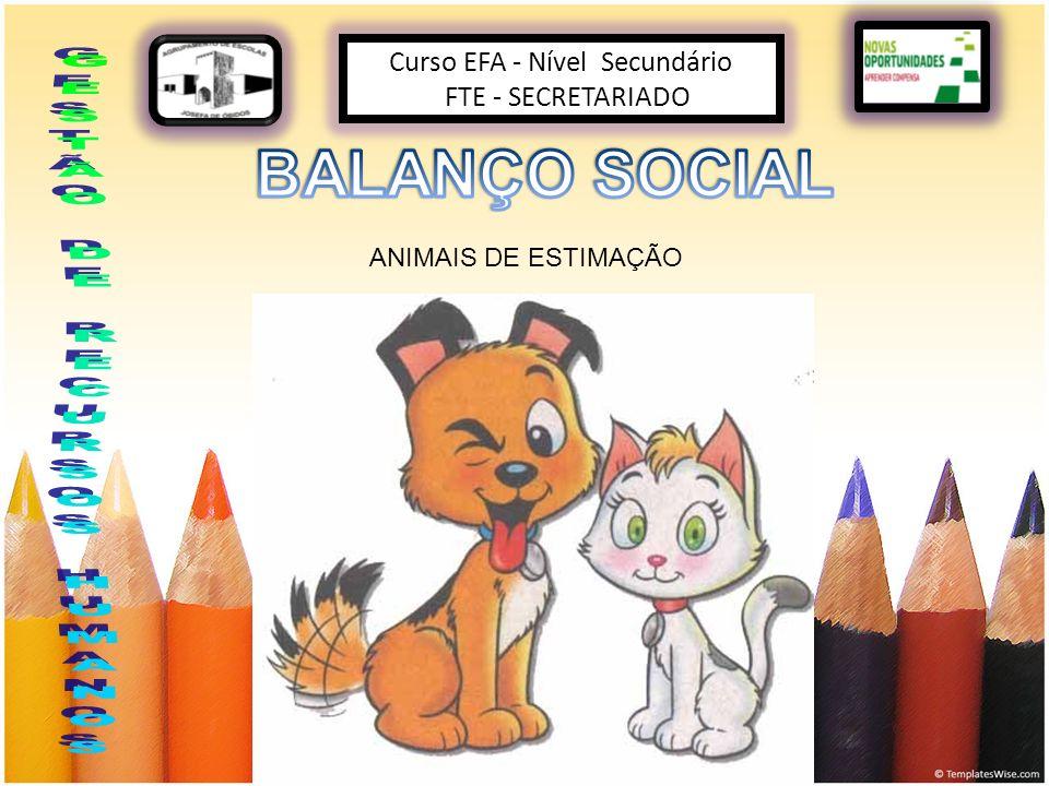 Curso EFA - Nível Secundário FTE - SECRETARIADO