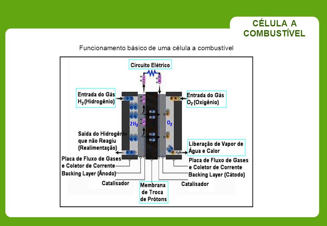 CÉLULA A COMBUSTÍVEL Funcionamento básico de uma célula a combustível