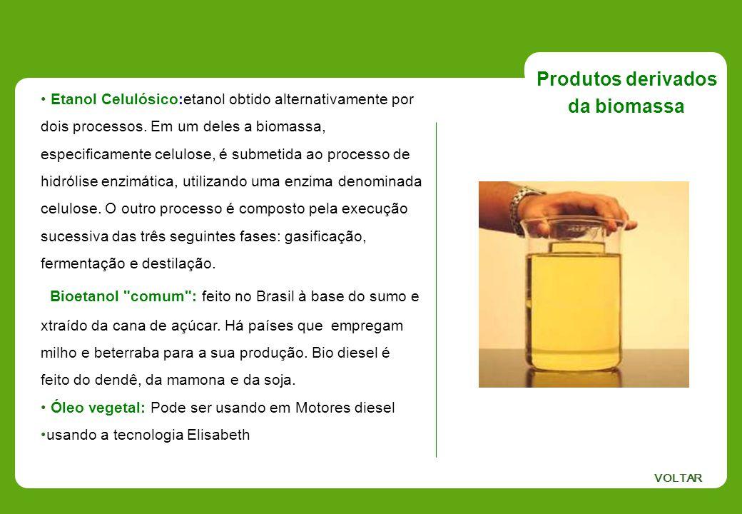Produtos derivados da biomassa