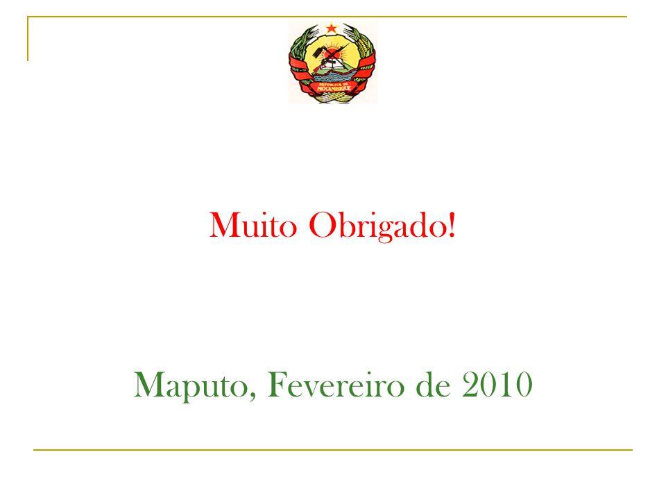 Muito Obrigado! Maputo, Fevereiro de 2010