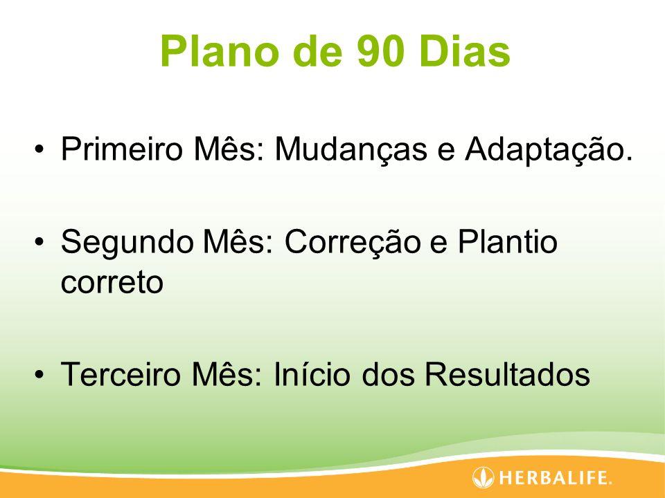 Plano de 90 Dias Primeiro Mês: Mudanças e Adaptação.
